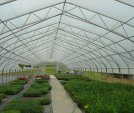upload/gallery/32/grower-s-choice-interior.jpg