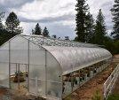 upload/gallery/44/growers-choice-3-1-.jpg